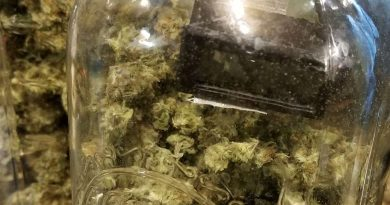 What is the best humidity level to cure weed to get the best marijuana buds?