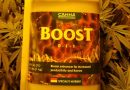How to use Canna Boost to grow better weed plants