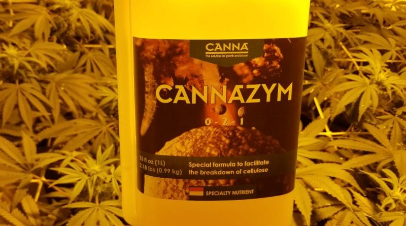 How much Canna Cannazyme should you use with weed plants?