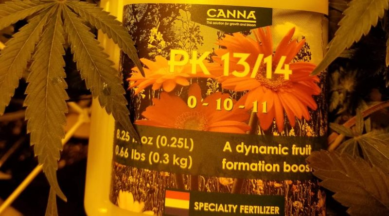 Canna PK 12/13 is a potassium and phosphorus supplement for weed plants