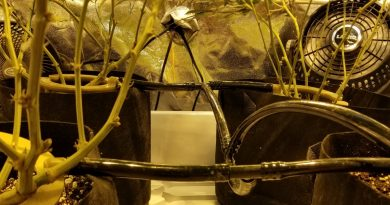 what sized fan is best for air circulation in grow tents