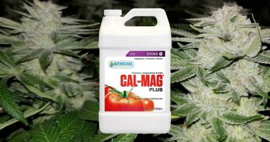How to use Cal-Mag Plus with marijuana plants