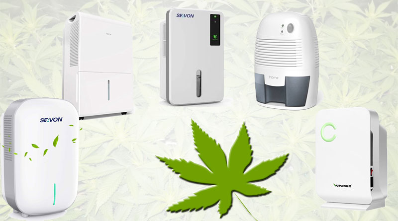 Grow tent dehumidifier guide: best dehumidifier for grow tent use