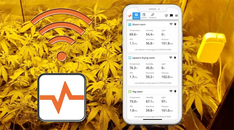 Product Review: Pulse One Grow Tent Monitor and phone app
